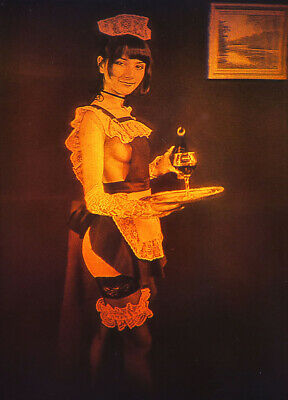 £2.16 • Buy 4x6  10x15cm Sexy Maid - True 3D Laser Hologram Picture On Film
