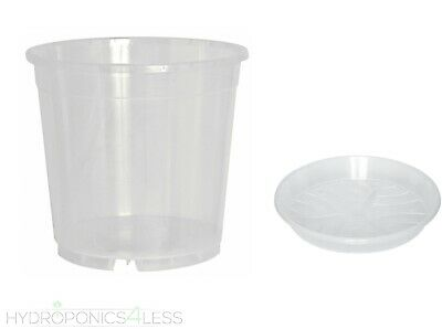 Clear Orchid Plant Plastic Grow Pot 9, 12, 13, 15, 17, 19, 21cm Or Saucers • 6.99£