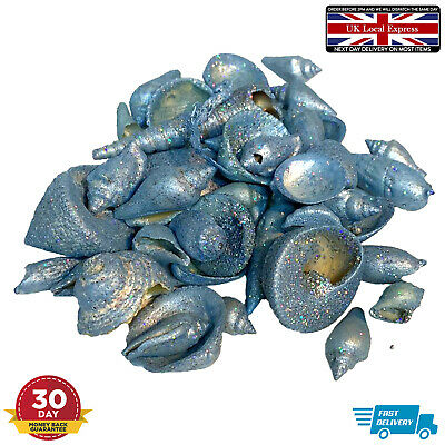 Blue Glitter Effect Sea Shells Conch Deco Beach Stone Summer Fondant DIY Mold • 4.95£