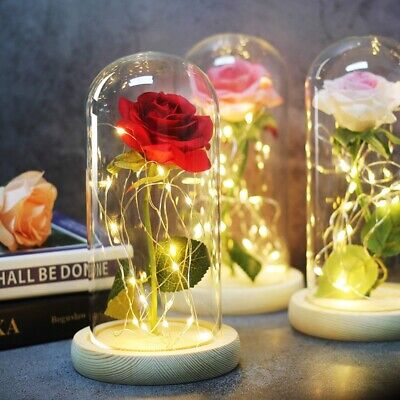 AU22.99 • Buy Preserved Rose Flower In Glass Dome LED Light Birthday Decor Valentine Day Gift