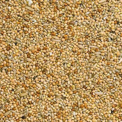 10 Kilo Budgie Food, Ideal Mix Of Red & White Millet With Canary Seed, FREE Post • 18.95£