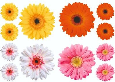 Gerbera Daisy Flower Decals Sticker Graphics Nursery Wall Window Decorations Art • 2.99£