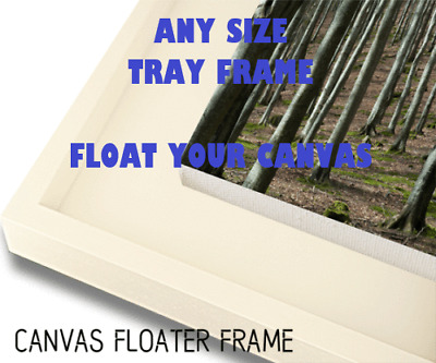 Any Size Tray Picture Frame - Floating Stretched Canvas Or Raised Canvas Board • 999£