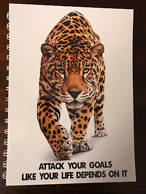 AU14.95 • Buy 2021-2022 Financial Year Diary Tiger With Goals Quote A5 WEEK TO VIEW