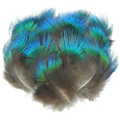 Rare Natural Blue Fan Feathers 3cm - 8cm Peacock Fly Craft Hat Arts Costume UK • 3.75£