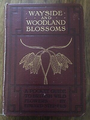 Wayside And Woodland Blossoms : Edward Step - Second Series -new Edition • 9£