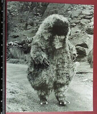 Doctor Who Original 10 X 8  Photo The Abominable Snowmen, 1967. Yeti On Location • 14.99£