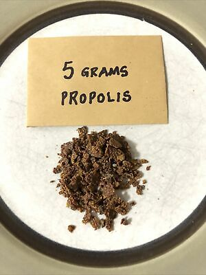 5 Grams Raw Bee Propolis Harvested From My Own Beehives In Hampshire UK • 3.49£