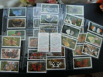 One Complete Set Cigar Cards Player's Grandee British Butterflies • 0.99£