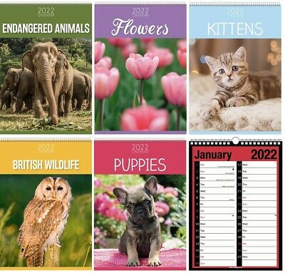 £3.49 • Buy 2022 Wall A4 Calendar New Year One Month View Home Calender & Pocket Diary