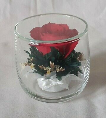 AU14.23 • Buy Faux Rose In Glass Valentine's Day Gift