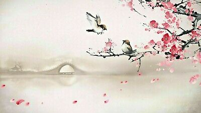Cherry Blossom Tree With Birds Chinese Art Canvas 20x30 Inches Wall Art  • 22£