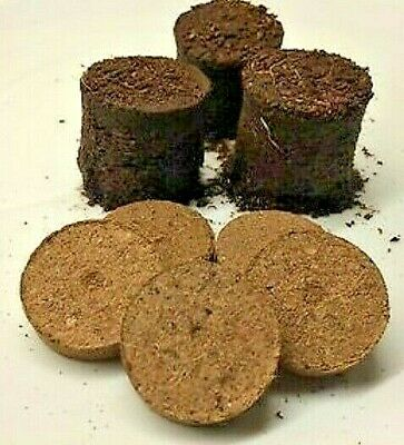 £4.99 • Buy 15 - 100 COCO COIR DISCS/COMPOST 30mm FOR FILLING PLUG TRAYS EXPAND QUICKLY