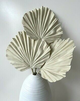 AU7.95 • Buy Dried Flowers Artificial Palm Fan Stem Preserved Look Fake Palms Leaf Natural