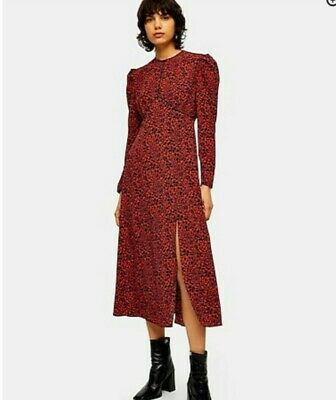 £35 • Buy Topshop Red Leopard Print Piped Midi Dress Uk 12