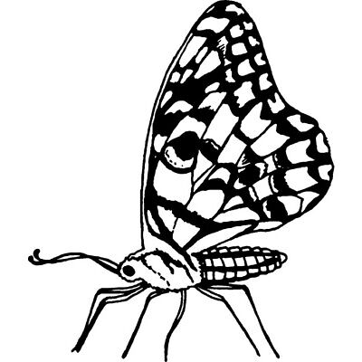 £5.99 • Buy 'Butterfly' Rubber Stamp (RS022963)