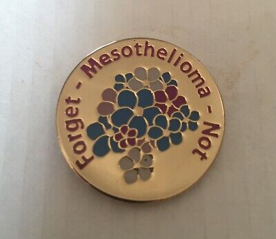 £2 • Buy Asbestos Cancer Charity Badge Mesothelioma £1Million Appeal Fund Please Support