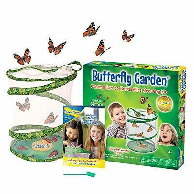 £22.17 • Buy Insect Lore Kids Live Butterfly Garden Hatching Kit- Grows 5 Caterpillars New