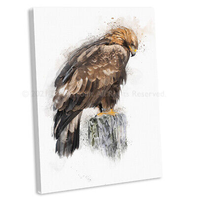£16.99 • Buy Golden Eagle Watercolour Style Canvas Print Bird Wall Art Picture