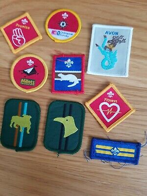 £1.50 • Buy Assorted Scout,cubs And Beaver Cloth Badges