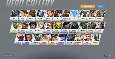 AU167.03 • Buy Overwatch PC Account 8 Gold Weapons Silver Border Level 991