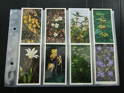 £0.99 • Buy One Complete Set Cigar Cards Player's Grandee Britain's Wild Flowers