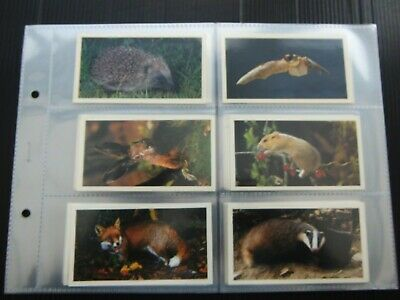 £0.99 • Buy One Complete Set Cigar Cards Player's Grandee Nocturnal Wildlife