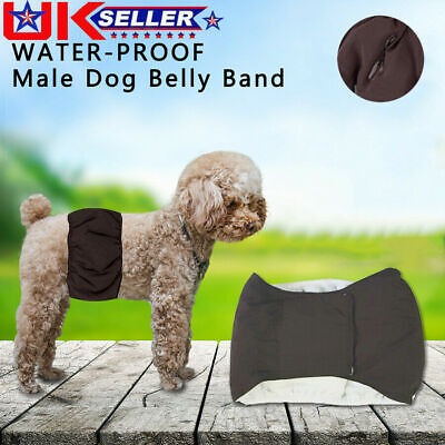 £1.99 • Buy Pet Male Dog Physiological Pants Sanitary Nappy Belly Bands Comfortable Diapers