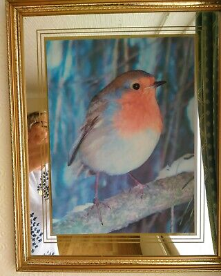 £5 • Buy 3d Robin Mirror Hologram Picture
