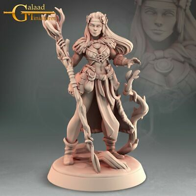 £6 • Buy Druid, Into The Woods, Galaad Miniatures, D&D, Rpg, Dungeons And Dragons