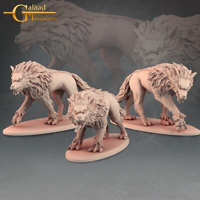 £10 • Buy 3 Wolves, Into The Woods, Galaad Miniatures, RPG, D&D, Dungeons And Dragons