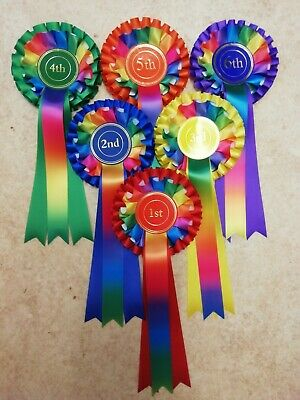 £7.75 • Buy 1st - 6th Place 2 Tier Rainbow Rosettes Dog Show, Horse Pony Gymkhana NHS Prize