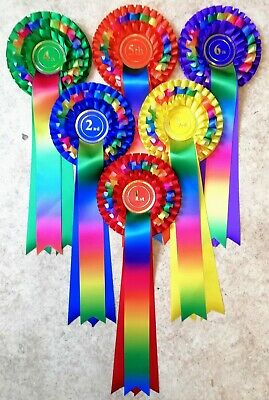 £9.95 • Buy 1st - 6th Place 3 Tier Rainbow Rosettes Dog Show, Horse Pony Gymkhana NHS Prize