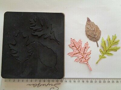 £17 • Buy Sizzix Bigz Tim Holtz Alterations Tattered Leaves ~ Craft Die Cutter