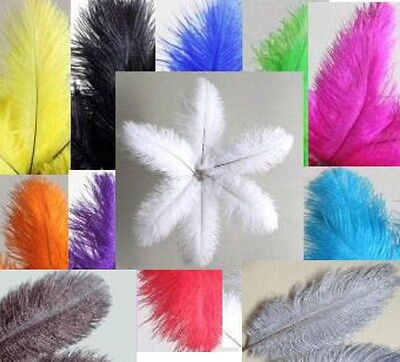 $5.67 • Buy 10 OSTRICH Feathers 8-10  CHOOSE COLOR Or MIX FlatShip$3.49 Drabs Plumes Feather