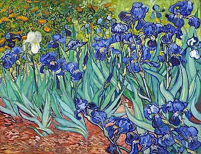 £50 • Buy Vincent Van Gogh Irises Canvas Stretched Wall Art Poster Print Artist Painting