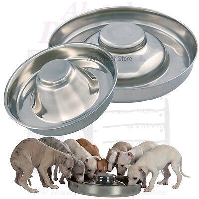 Puppy Weaning Bowls Stainless Steel Low Rim Elevated Middle DOG SLOW FEED DISH • 18.49£