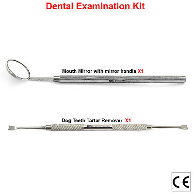 Dog Teeth Scaler For Tartar And Plaque Remover With Mirror Handle And Mirror • 4.40£