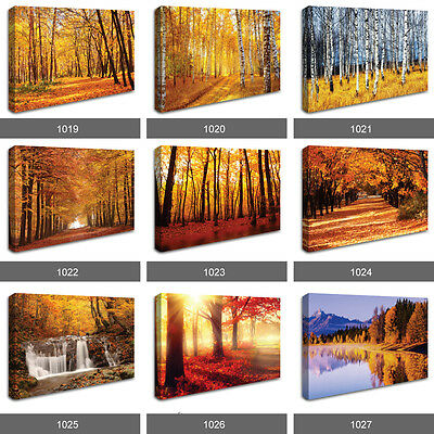 Red Autumn Leaves Forest Trees Sunset Waterfall Photo Wall Canvas Landscape RMC • 17.99£
