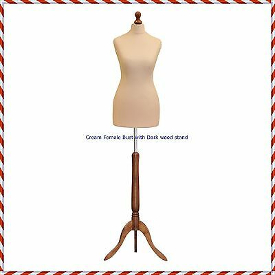 £34.95 • Buy Female Size 10/12  Tailors Bust Mannequin Cream Dummy  Fashion  Retail Display