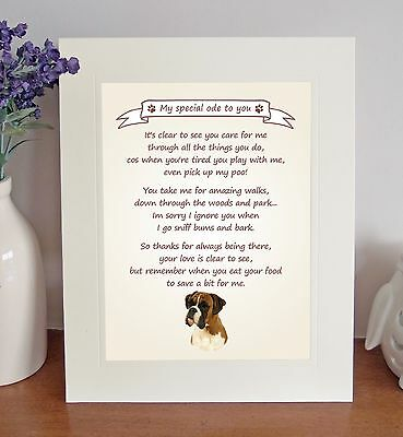 Boxer Thank You FROM THE DOG Poem 8 X 10 Picture/10x8 Print Novelty Gift-No1 • 7.50£