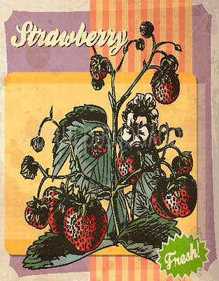 Fresh Strawberry  Large Metal Tin Sign Poster Wall Plaque • 12.99£