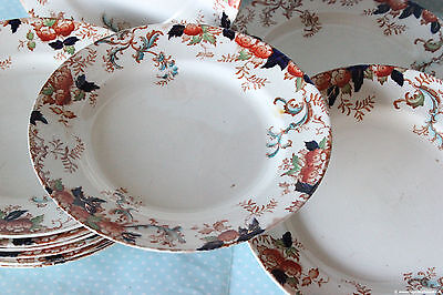 Vintage foley tulip fine tazza da te british things