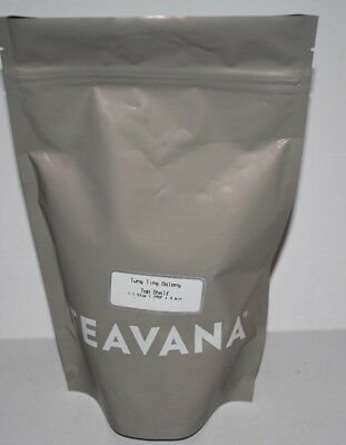 Teavana Tung Ting Oolong Loose Leaf Tea~9 Oz~Fresh! • 54.11£