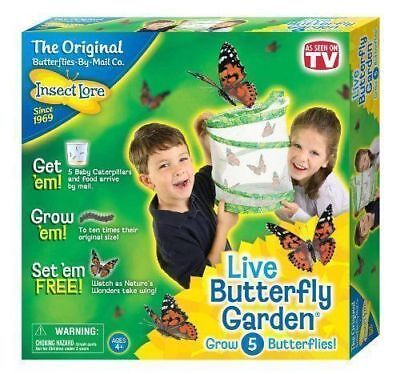 Butterfly Garden Live Hatching Kit Breed 5 Butterlies Insect Lore • 25.99£