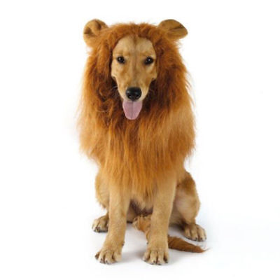 £4.99 • Buy Pet Clothes  Dog Costumes Fancy Dress Up Lion Mane Wig For Large Dogs