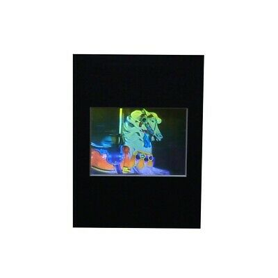 £36.04 • Buy 3D Carosel Horse True Colour Hologram Picture MATTED, Embossed Type Film