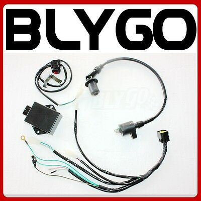 AU62.99 • Buy Complete Wire Wiring Harness Loom YX 160CC 4 VALVE Engine PITPRO Trail Dirt Bike
