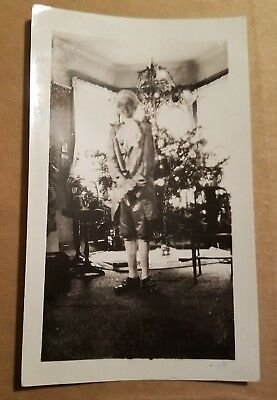 1930s Photo - Weird Boy In Full 18th Century French Costume With CHRISTMAS TREE • 5.61£