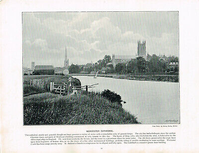 £5.99 • Buy Worcester Cathedral River Severn Antique Old Picture Print C1896 PEAW#52